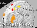 Vienlaicīgi trīs lietu pildīšana uzspridzina smadzenes