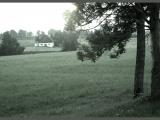 02.09.2013. Nacionālā identitāte: Aicina Saeimu pārtraukt zemes pārdošanu ārvalstniekiem