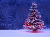 Saeimā pirmajā lasījumā atbalsta brīvdienas noteikšanu pareizticīgo Ziemassvētkos