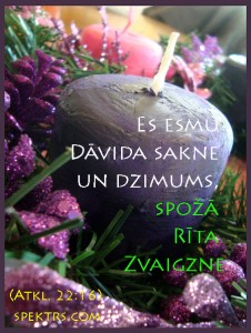 spoza_rita_zvaigzne_spektrs_com